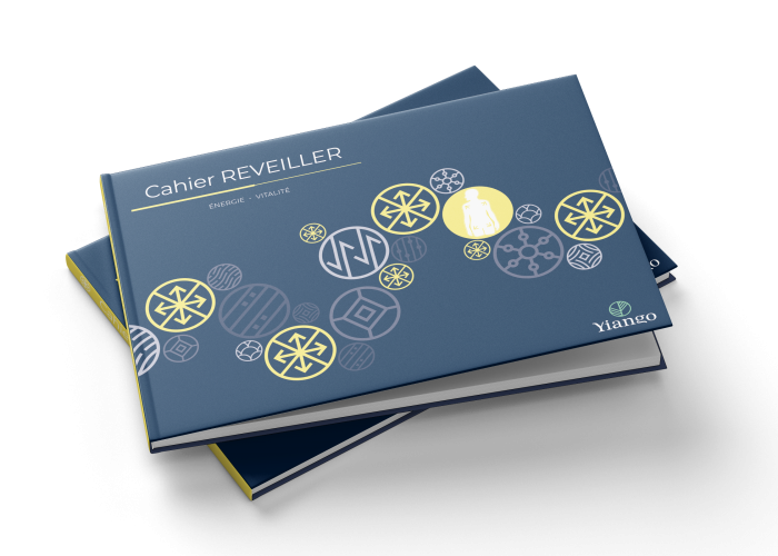 Revieller_Book_Mockup_6