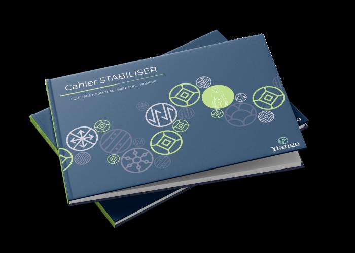 Stabiliser_Book_Mockup_6